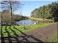 NZ0575 : Pond near Byerley Stud by Les Hull