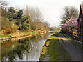 SJ6799 : Bridgewater Canal by David Dixon