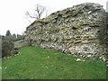 SU6362 : Roman Wall - Calleva by Sandy B
