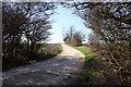 TL1367 : Footpath around Grafham Water by Simon Judd