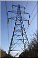 TL1267 : Electricity pylon in woodland by Simon Judd