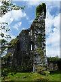 M1357 : Aghalard Castle by dougf