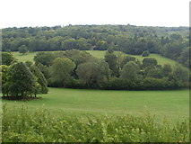 TQ1352 : View from Polesden Lacey, Surrey by David Hillas