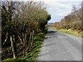 C1230 : Road at Gelnineeny by Kenneth  Allen