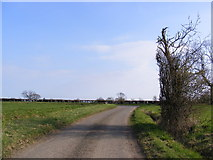 TM3662 : The U2226 looking towards Silverlace Green by Adrian Cable