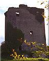 R5159 : Cratloe Tower House by Roger Diel