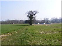 TM3760 : Footpath to Aldecar & A1094 Farnham Road by Adrian Cable