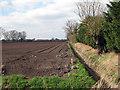 TL5465 : Field at Slades Farm by John Sutton