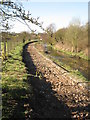 SP1292 : Preparing for New Cycle Path, Plants Brook by Michael Westley