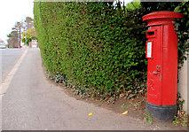 J3873 : Pillar box, Belfast by Albert Bridge