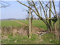 TM3960 : Footpath to the B1121 Saxmundham Road by Geographer