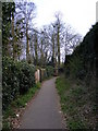 TM3863 : Footpath to the B1121 North Entrance by Adrian Cable