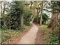 TQ1731 : Path at West of Horsham Park by Paul Gillett