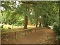 SP9436 : Path at Aspley Guise by Derek Harper