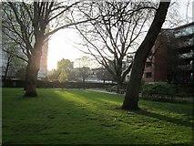 TQ3282 : Setting sun, Bunhill Fields by Rich Tea