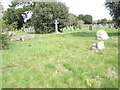 TQ1404 : A guided tour of Broadwater & Worthing Cemetery (48) by Basher Eyre