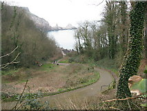 SX9364 : Path to Anstey's Cove by Sarah Charlesworth