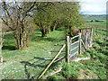 SO5794 : Footpath towards Brockton by Jeremy Bolwell