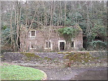 SK3155 : Derelict cottage near the Cromford Canal by JThomas