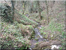 SK3155 : Stream near the Cromford Canal by JThomas