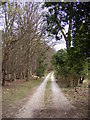 TM3760 : Footpath to Monks Valley House by Adrian Cable