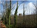 X0882 : Templemichael Castle by dougf