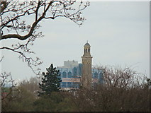 TQ1876 : Kew Bridge Steam Museum Tower, viewed from the Xstrata Treetop Walkway by Robert Lamb
