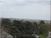 TQ1876 : Panorama from the Xstrata Treetop Walkway by Robert Lamb