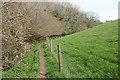 SX4057 : Saltash: public footpath by Martin Bodman