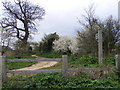 TM3157 : Bridleway to the B1116 The Street by Geographer
