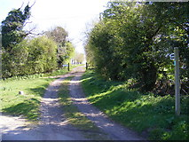 TM2754 : Bridleway to Moat Farm by Adrian Cable