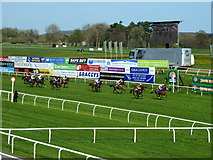 ST5294 : Reaching the Winning Post, Chepstow Racecourse by Ruth Sharville