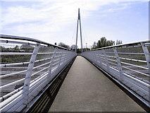 SJ8092 : M60 Footbridge, Sale Water Park by David Dixon