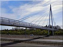 SJ8092 : M60 Suspension Bridge, Sale by David Dixon