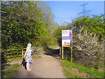 SJ7993 : Footpath Entering Broad Ees Dole Nature Reserve by David Dixon