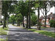 TQ3765 : Bridle Road, CR0 by Mike Quinn