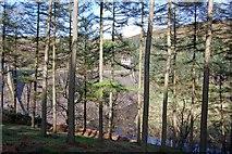 SK1789 : Hope Woodlands : Derwent Dam by Ken Bagnall