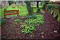 TF6932 : Churchyard at Ingoldisthorpe by Phil Champion
