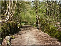 SK2563 : Old quarry track to Lees Road by Andrew Hill
