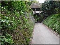TQ1352 : Footbridge, Polesden Lacey by Nigel Mykura