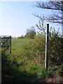 TM3364 : Footpath to Bruisyard Road by Geographer