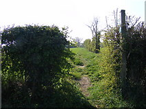 TM3464 : Footpath to the B1119 Saxmundham Road by Adrian Cable