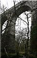 SX0557 : Treffry Viaduct by David Lally