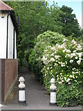 TQ3765 : Alleyway between Copse Avenue, BR4 and Links View Road, CR0 by Mike Quinn