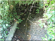 TQ3765 : The Beck west of The Alders, CR0 (2) by Mike Quinn