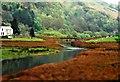 SH5456 : Afon Gwyrfai by Anthony Parkes