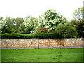 NZ3566 : A secret walled-garden? by Stanley Howe