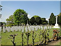 TM1745 : Ipswich Old Cemetery, WWII Field of Remembrance by Adrian S Pye