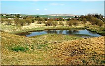 NS6113 : Knockshinnoch Lagoons Nature Reserve by Mary and Angus Hogg