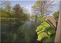 TA0256 : River Hull at Skerne Road, Driffield by Paul Harrop